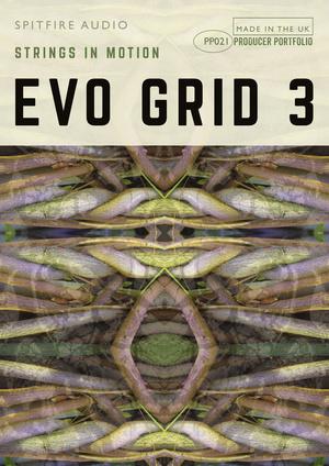 PP021 Evo Grid 3