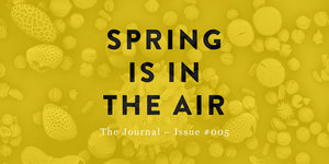 #005 March 2016 The Spring Issue