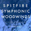 Spitfire Symphonic Woodwinds