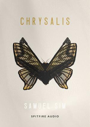 Samuel Sim - Chrysalis artwork
