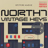 North 7 Vintage Keys