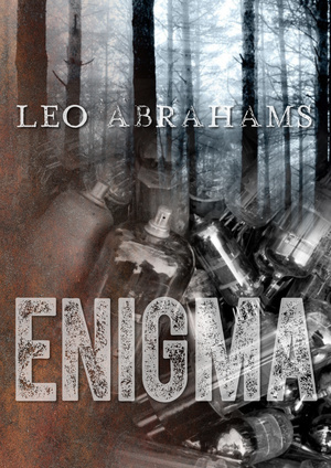 Leo Abrahams - Enigma artwork