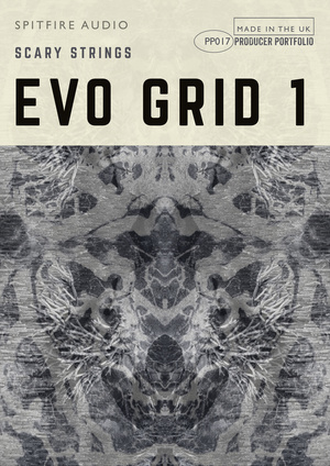 PP017 Evo Grid 1 artwork