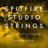 Spitfire Studio Strings