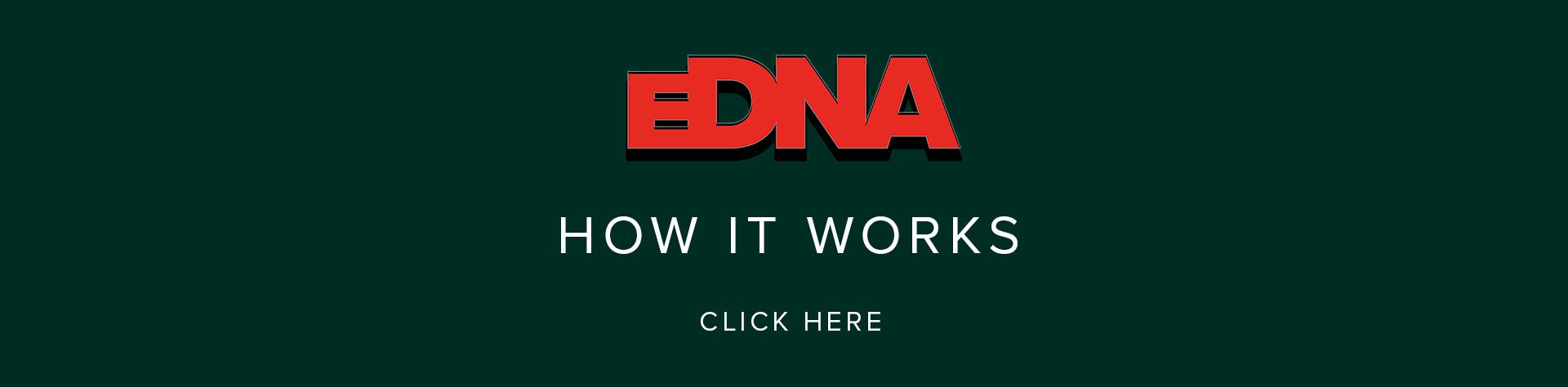 Spitfire Audio — EDNA Earth