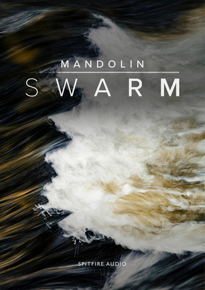 Mandolin Swarm artwork